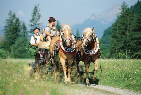 Pferdekutschfahrt_bei_Oberammergau