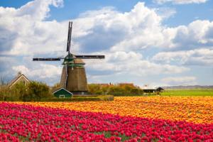 134390_Amsterdam_Holland Windmills_4