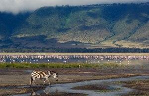 Ngorongoro_Conservation_Area_009 - Copy - Copy