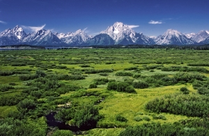 Willow_Flats_area_and_Teton_Range_in_Grand_Teton_National_Park