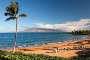 Maui wailea beach - Copy - Copy - Copy