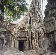 13_5_Angkor_Wat - Copy - Copy - Copy (2) - Copy