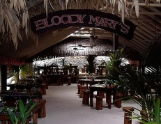 bloddy marys