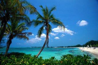Island-of-Grand-Bahama - Copy