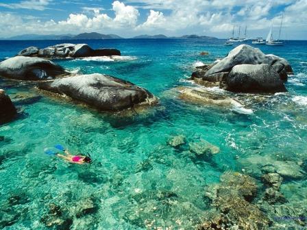 c8f5e793-f676-4da2-8dd6-de955ef5a694caribbean-islands-snorkeling_2 - Copy