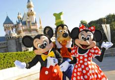 Disney-World-450x313 - Copy