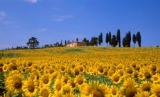 Surrounding province of Siena, F, TUSCANY, Chianti, Maremma, Crete, ITALY --- Era valley in spring --- Image by © Fabio Muzzi/cultura/Corbis