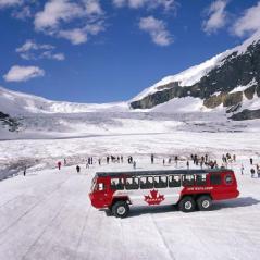 columbia ice field 3 - Copy (3)