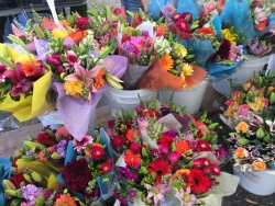 farmers-market-flowers - Copy (2)