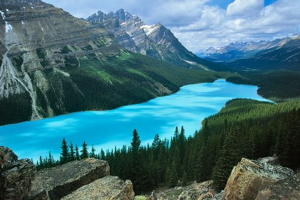 peyto lake - Copy