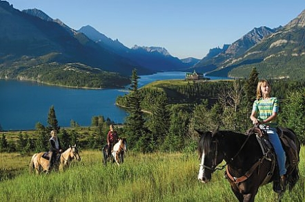 waterton horse - Copy (2)