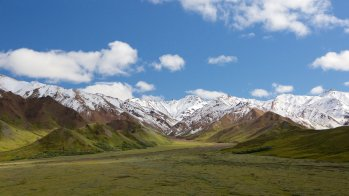 150851-Denali-National-Park