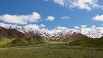 150851-Denali-National-Park