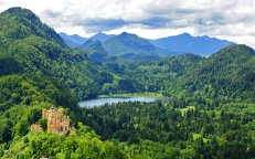 germany-bavaria-bavarian-forest