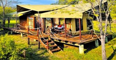 Serengeti+Migration+Camp+-+Tent - Copy