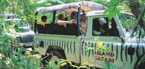 island-safari-attractions_barbados