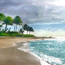 kauai-shore-copy-copy-2