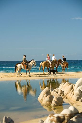 Tropical Tours-Horseback Tour, Model Released Tourists, Rancho Carisivu, West Side of Cape, , near Cabo San Lucas, Baja California, Mexico