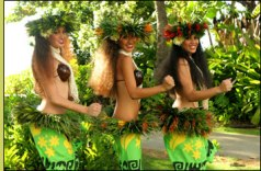 hula-dancers - Copy