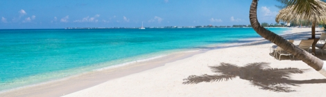 cayman-beach-palm-tree-ocean-696 - Copy