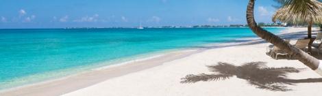 cayman-beach-palm-tree-ocean-696 - Copy