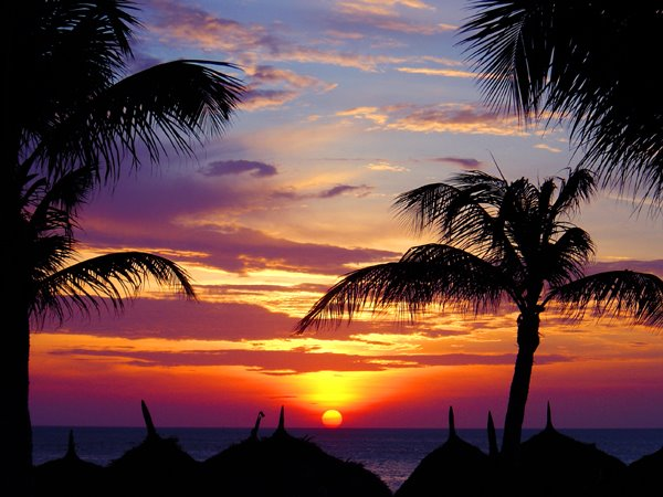 aruba sunset - Copy