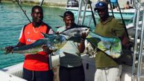 providenciales-deep-sea-fishing-adventure-in-leeward-settlement-266275