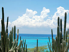 462_145_aruba_nature1 - Copy