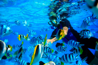 Bora-Bora-Snorkeling - Copy